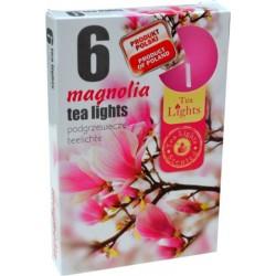 Čajové sviečky - Magnólia - 6 ks - Admit