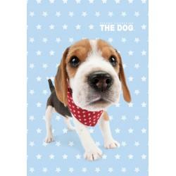 Detský uterák 30x50cm - Dog