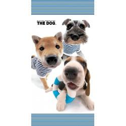 Osuška - The Dog, Námorníci