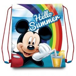 Taška na telocvik a prezuvky - Mickey Summer - EUROSWAN