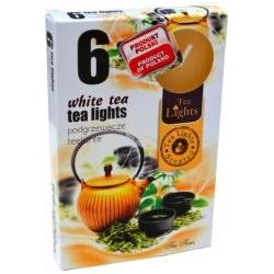 Čajové sviečky - Biely čaj - 6 ks - Admit