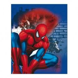 Detská obojstranná deka - Spiderman - 150 x 120 cm