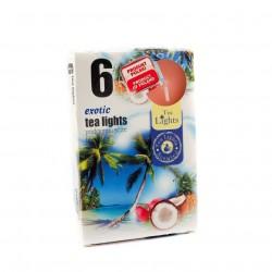Čajové sviečky - Exotické ovocie - 6 ks - Admit