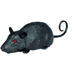 R/C krysa na diaľkové ovládanie - Wildroid - Orbico