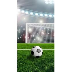 Osuška - Futbalová lopta - 140 x 70 cm - Detexpol