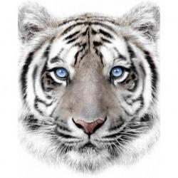 Deka z mikroflanelu - Biely tiger - 150 x 120 cm - Jerry Fabrics