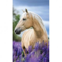 Uterák - Kôň v levanduli - 50 x 30 cm - Detexpol