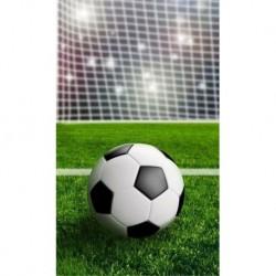 Uterák - Futbalová lopta - 50 x 30 cm - Detexpol