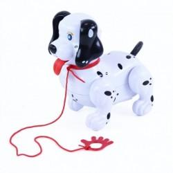 Chodiaci pes s vodidlom - Rappa