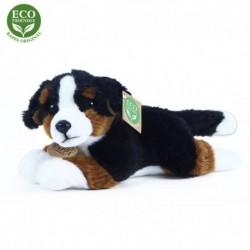 Plyšový bernský salašnícky pes - 23 cm - Rappa