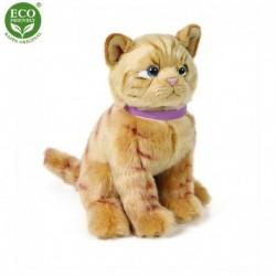 Plyšová mačka - hnedá - 25 cm - Rappa