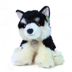 Plyšový pes malamut - sediaci - 28 cm - Rappa